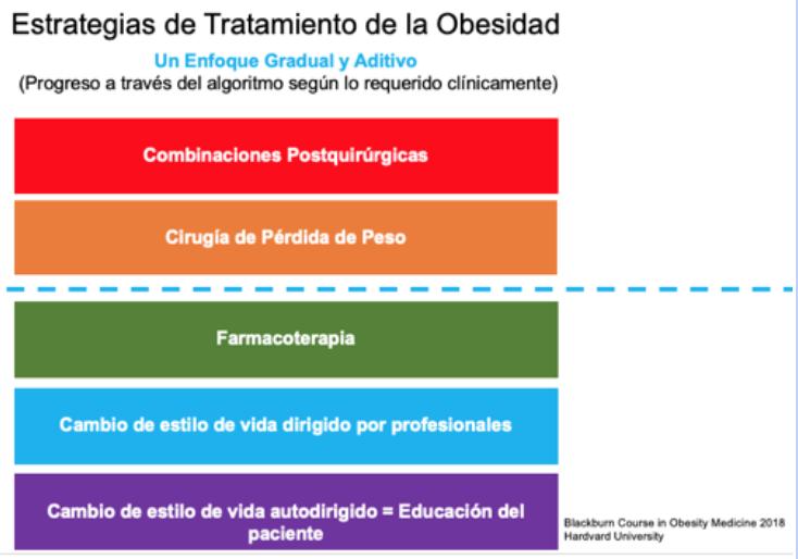 Estrategias de tratamiento de obesidad